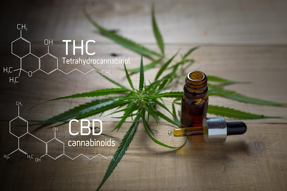 Tincture bottle and cannabis plant with THC and CBD molecules written overtop