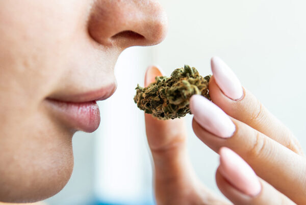 Woman holding cannabis up to nose, smelling aroma