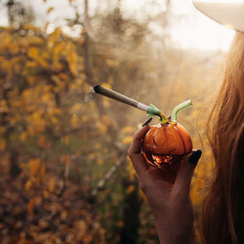 Woman outside during fall holding a pumpkin pipe