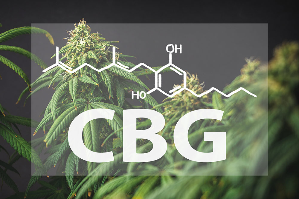CBG molecule make up with cannabis flower in the background